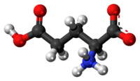 Polyglutamic acid